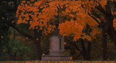 A gif a day for your fall and Halloween obsession. Orange Aesthetic, Aesthetic Gif, Aesthetic Wallpapers, Aesthetic Movies, Anime Gifs, Anime Art, Gif Background, Autumn In New York, Nature Gif
