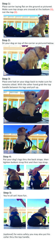 How to place your dog into a Ruffit Dog carrier/ backpack. How to use a dog carrier/ backpack.