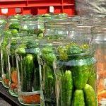 Zavařování okurek ve Znojmě Preserves, Pickles, Cucumber, Canning, Food, Preserve, Home Canning, Preserving Food, Pickle