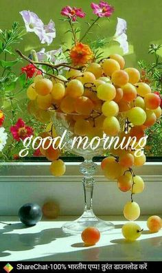 Good Morning Pictures 2018 In Hindi Punjabi English - Whatsapp Images The Effective Pictures We Offer You About GIF de amor A quality picture can tell you many things. You can find the most beautiful Good Morning Friday Pictures, Good Morning Winter, Good Morning Beautiful Pictures, Latest Good Morning Images, Good Morning Nature, Good Morning Images Flowers, Good Morning Msg, Good Morning Roses, Good Morning Cards