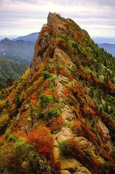 Mt. Ishizuchi, Ehime, Japan 石鎚山