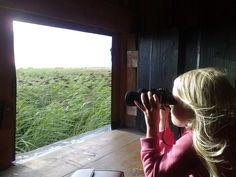 Binoculars in Holmsland  (Sol og strand) by Johan Koolwaaij, via Flickr