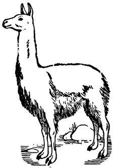 Lama template cut out of brown