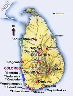 Blog coneils Sri Lanka