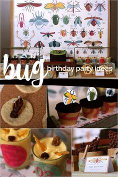 A Bug Bash Birthday