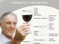 Sintesis de la cata de vino