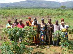 Much of the farming in Burundi is done by women