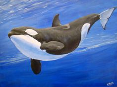 Orca by MzJekyl on DeviantArt Killer Whale Tattoo, Killer Whales, Orcas, Liberen A Willy, Le Morse, Orca Art, Animals Beautiful, Cute Animals, Parc A Theme