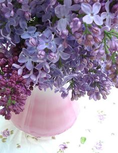 Lilacs...I've picked many...reminds me of my childhood, when I picked lilacs and gave them to my Mom. I can still smell them.