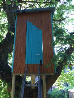 Treehouse, do you like the door design?