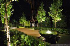 The same garden with fantastic light lighting