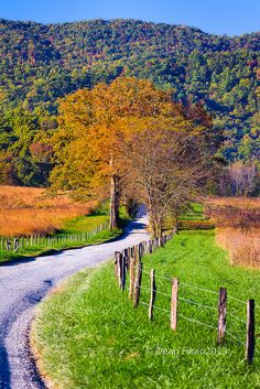 ˚A winding country road in Cade's Cove, Great Smoky Mountains National Park - Tennessee.  We rented a Mustang convertible and spent a week driving through the mountains.  It was wonderful.