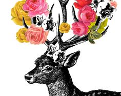 deery with roses
