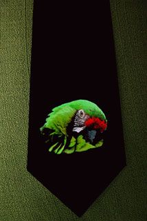 Green parrot drawing 1 DELUXE ART CUSTOM HAND-PAINTED TIE To order this go to http://www.collectorware.com.ar/neckties-1animals.htm