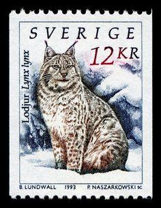 Eurasian lynx (Lynx lynx), designed by Swedish artist Bo Lundwall (1953- ), engraved by Piotr Naszarkowski, and issued by Sweden on January 28, 1993, Scott No. 1936