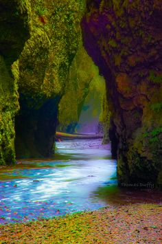 """Oneonta Gorge II"" by Thomas Duffy, via 500px."