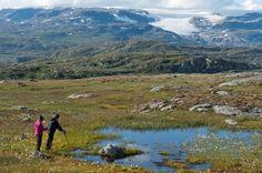wandelen-noorwegen-hardangervidda-08