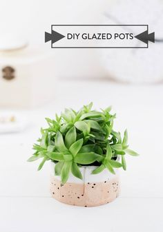Bring a touch of nature into your home this spring with DIY faux glazed pots and a delightful succulent.