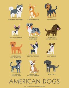 18 charts show where different dog breeds come from - Lili Chin