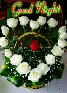 We provide the flowers based on the requirement for every occasion. Valentine Flower Arrangements, Funeral Flower Arrangements, Church Flower Arrangements, Church Flowers, Valentines Flowers, Rose Arrangements, Beautiful Flower Arrangements, Funeral Flowers, Wedding Flowers