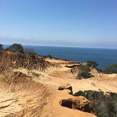 "Hiked and wandered through Torrey Pines. This place is unreal, and today was amazing and overwhelming in all the right ways. Last night, I told someone that I planned to go here solo, and his reply was ""That sucks."" Today was the opposite of sucks, dude. 😎 . #torreypines #westcoastbestcoast #lajolla #sandiego #lajollalocals #sandiegoconnection #sdlocals - posted by Joanna Armandi  https://www.instagram.com/joeyrose88. See more post on La Jolla at http://LaJollaLocals.com"
