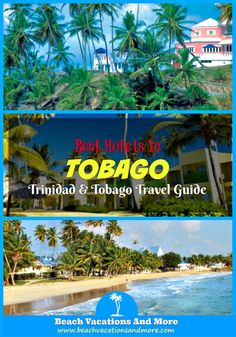 The best Tobago hotels and resorts: Coco Reef, Magdalena Grand Beach & Golf Resort, Turtle Beach by Rex Resorts, Le Grand Courlan Spa Resort, Crown Point Beach Hotel, Blue Haven Hotel