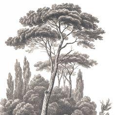 Paysages gravures - Toile panoramique Paysage d'Italie grisaille L250xH300