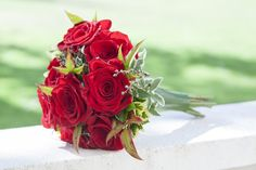 Ramo rosas rojas para boda Plants, Bunch Of Red Roses, Bouquets, Flowers, Plant, Planets