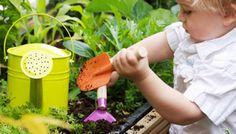 30 ideas para hacer con niños este verano. Plantar una semilla y cuidar la planta