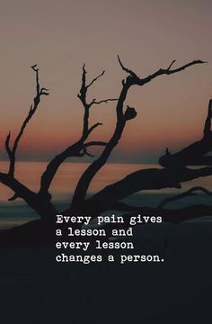 Every pain gives a lesson..
