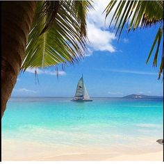 #TravelTuesday ⛵️ #Seychelles#BeautifulIsland#summertime #sea#ocean#thissummer #DCmoments #travelinspiration #MyColourOfSummer #JWBucketlist #Paradiseisland#asia