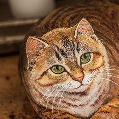 Gli occhi di gatto sono finestre che ci permettono di vedere dentro un altro mondo (leggenda irlandese) #artesasso #sassidipinti #painting #paintedstones #occhidigatto #handmade #cute #beautiful #sassidipinti #cat