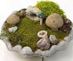 Miniatur Garten mit Moos und Steinpilzen