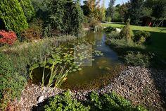 fuentes-y-estanques-pratum-green-paisajismo (3)