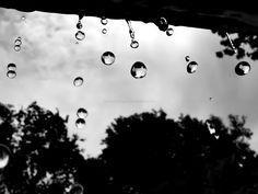 Rain Drops Falling