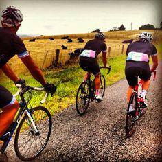 Papa Bear Cafe cycling kit | moter.com.au