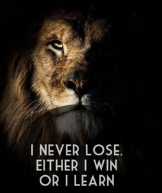 It's all a learning experience.  #motivation #winning #lion
