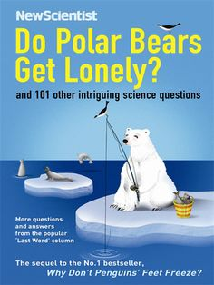 Do Polar Bears Get Lonely?: And 110 Other Questions