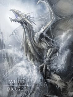 MZLoweRPP verified link on 6/20/2016 Source: Artist's page on ArtStation.com Artist: Maxime BiBi Artist's Title: White Dragon