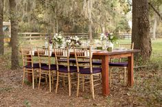 Rustic Chic Champagne and Purple Wedding Inspiration.this is sort of wedding style/colour palette I like Purple Wedding, Dream Wedding, Wedding Day, Wedding Planning Tips, Wedding Planner, Chiavari Chairs, Purple Hues, Wedding Chairs, Outdoor Events