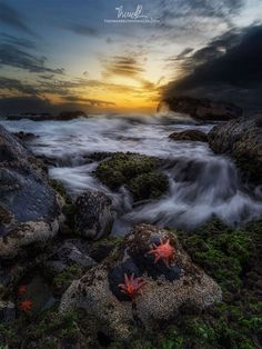 Cluster of Stars by Thomas Brown on 500px