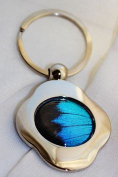 Real Butterfly Wing Jewelry Ulysses Butterfly Key by Athenianaire, $13.99