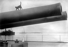 A cat, the mascot of the HMS Queen Elizabeth, walks along the barrel of a 15-inch gun on deck, in 1915. (Bibliotheque nationale de France)