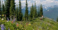 MountainTrek Alpine Lodge Hike and Soak in Hot Springs  Location: Ainsworth Hot Springs, British Columbia