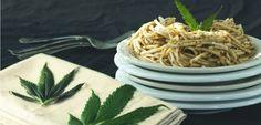 """3 recettes pour cuisiner au cannabis cet été.  À noter : en France, selon l'article L3421-1 du Code de la Santé Publique, """"l'usage illicite de l'une des substances ou plantes classées comme stupéfiants est puni d'un an d'emprisonnement et de 3.750€ d'amende""""."""