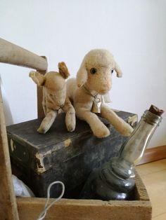 Old stuffed toy lambs