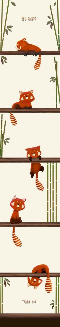 Red Panda -1