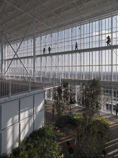 Renzo Piano Building Workshop, Enrico Cano · Intesa San Paolo Office Building