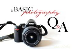 Dear Lillie: Basic Photography Q