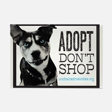 Adopt Don't Shop Magnets for